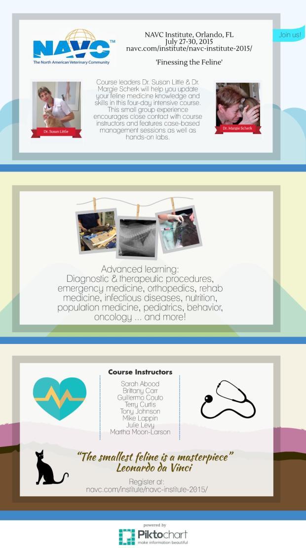 NAVC Institute Infographic