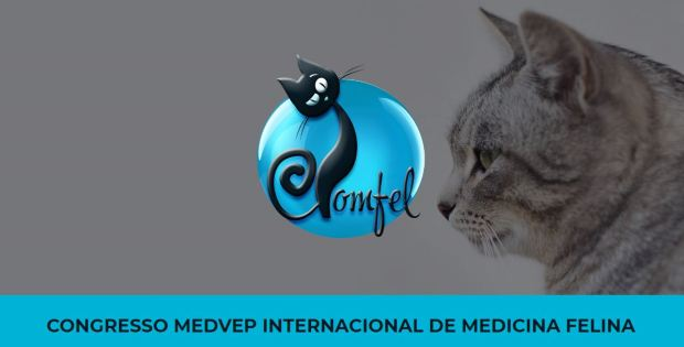COMFEL logo