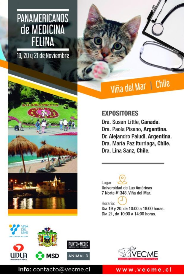 PANAMERICANOFELINA_2018-1-682x1024